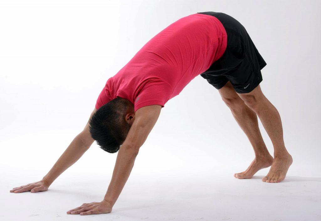 労働生理【筋肉】「筋肉と神経はどっちが疲労しやすいのか?」